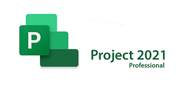 ms project 2019